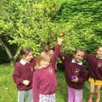 mrs gallagher nature walk18