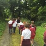 mrs gallagher nature walk41