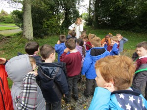 greenschool and senses walk 006