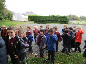 greenschool and senses walk 007