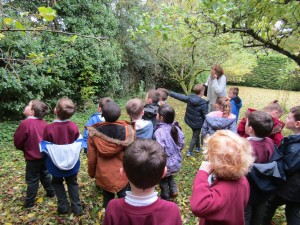 greenschool and senses walk 013
