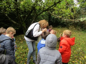 greenschool and senses walk 016