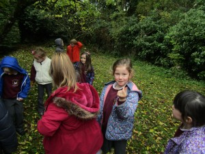 greenschool and senses walk 018