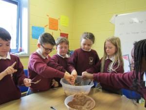 rice crispie buns and gaeligor na seactaine 043